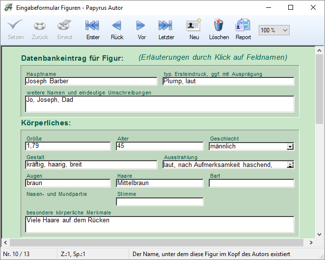 Screenshot Figurendatenbank Datensatz